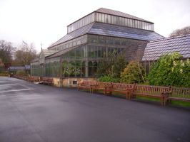 Glasshouse stock 12 by Cat-in-the-Stock