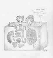 Ponies in a DVD Box by KuroiTsubasaTenshi