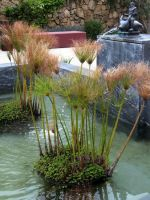 Getty Villa Garden by makepictures