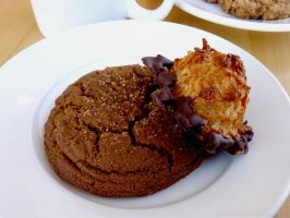 Ginger Snap Cookie and Chocolate Dipped Macaroon by electric-lime