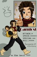 pixel ID Camlost by camlost