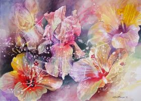 Hibiscus and Iris flowers by WillemSvdMerwe
