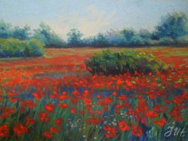Poppy landscape. 2 part. by herrerojulia