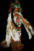 Native American Wind Goddess OOAK Barbie doll by dakotassong