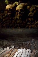 Catacombs of Paris by trent28o