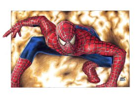 SPIDER-MAN by lealdacruz