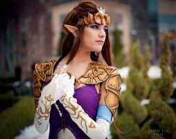 Twilight Princess: Hope by Queen-Caffeine