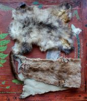 Mink and Opossum hide lot by lupagreenwolf
