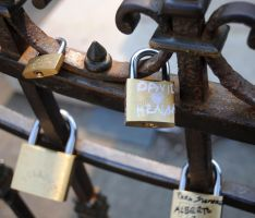 lover's locks by anemicroyalty2025
