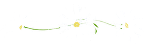 Daisy Divider - white version by 16thSquadSanseki