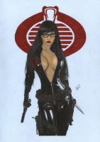 Baroness G.I.Joe 4 by TimGrayson