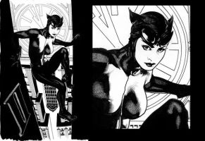 Catwoman 64 Uncolored by AdamHughes