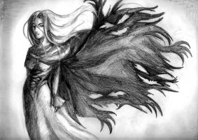 Darkness Cloak by Risachantag