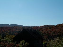 Fall Colors 2 by 4ever-rider