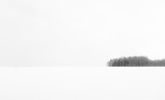 White Contrast by MinnMenja