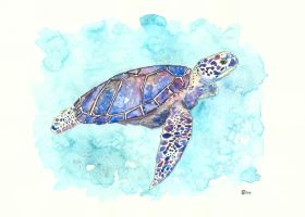 Mr. Sea Turtle by K-Roks-G