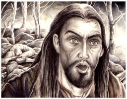 He looked down on Beleg's face by peet