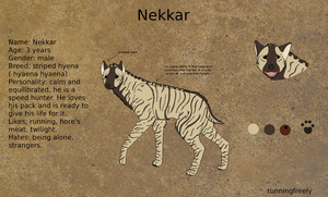 Nekkar Reference Sheet by runningfreely