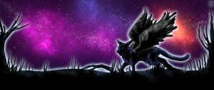 The Night Sky. by sugar-cat-candy