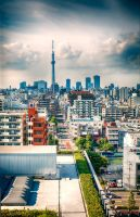 Tokyo view by andrewhitc