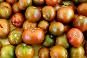 Tomato Texture 01 by pinksock-stock