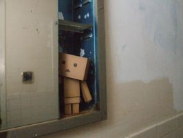 Where is that Danbo by AshBelmont