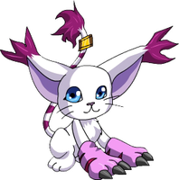 Gatomon DGMNRev by MangoGloor