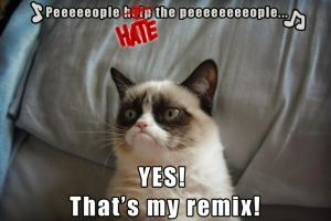 Grumpy Cat sings 'People help the people' by Birdy by Cthulhu1976