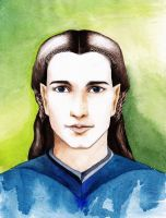 Fingon by RobleskaZeppelin