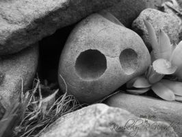 Even Rocks Have Eyes by MLArtistry