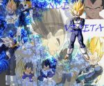 Vegeta Prince by eternal-rivalry