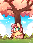 Hello Spring~ by ILifeloser
