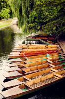 Day 321 Punts by Sato-photography