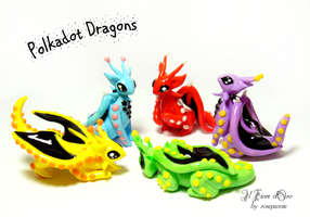 Polkadot Dragons by rosepeonie