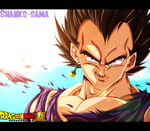 Vegeta by shanks-sama