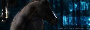 The Legacy Banner by Nightfall-Fields