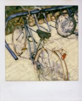 Bike: with note by plasket