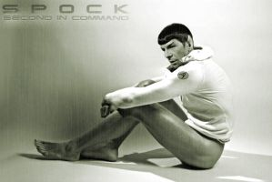 Spock 002 by MR-Bestiya