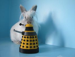 Dalek noms by michaela1232001
