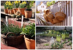 The Gardens of Colonial Williamsburg by TheBrassGlass