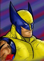 Wolverine by Jey2K