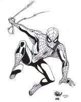 Spider-man - Wieringo - Egli - Inks by SurfTiki