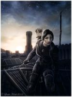 The Assassin by Isriana