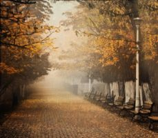 The time we lost our way by allcestis