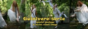 Special package: Guinivere by Iardacil-stock