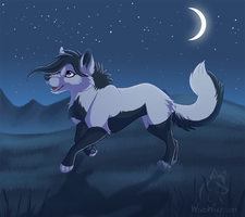 Night Run by WindWo1f