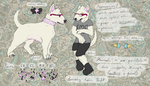 Megg Official Ref (Fall 2014) by wolfmeg