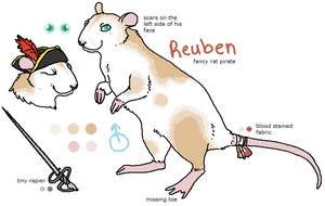 Reuben the Pirate Rat by ashleigheperry