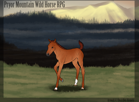 Mable l PryorMountain-rpg by AgentDarkhorse