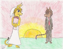 Sunset Wedding by jakers141